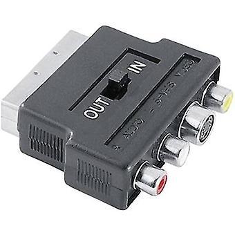 حماة SCART / RCA مركب / S-فيديو AV محول [1X SCART المكونات - 3x المقبس RCA (فونو)، S-فيديو المقبس] أسود