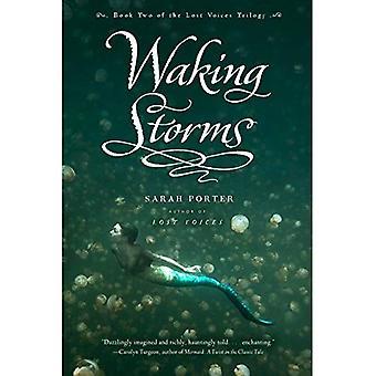 Despertar de las tormentas (trilogía de voces perdidas Series #2)