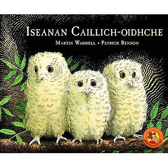 Iseanan Caillich-Oidhche