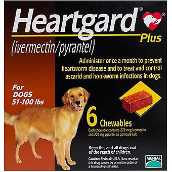 Heartgard Plus For Dogs 23-45kg (51-100 lbs) - 6 Chewables