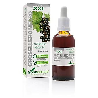 Soria Natural Extract of Grosellero N Siglo XXI (Herb , Natural extracts)