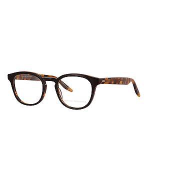 Barton Perreira Gellert BP5027 0CK Musta-Meripihka kilpikonna lasit