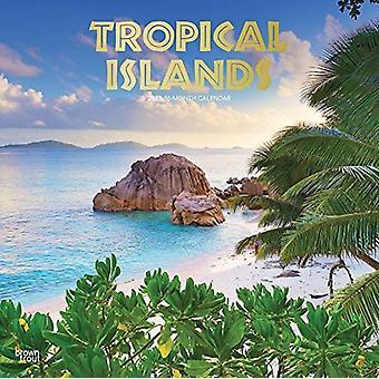 جزر استوائية 2021 مربع احباط التقويم بواسطة براونتروت