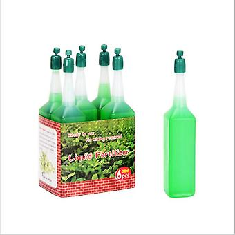 Hydroponic Liquid Fertilizer Bonsai Plant