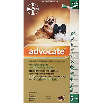 Advocate Dogs Under 4kg 8.8lbs (4kg) - 6 Pack