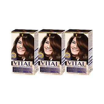 Schwarzkopf Vital Colors 4-07 Chestnut Permanent Hair Colour Dye x 3 Pack