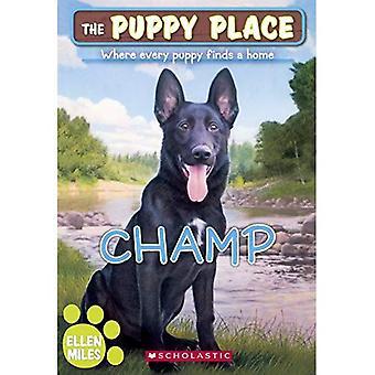 Champ (Puppy plaats)