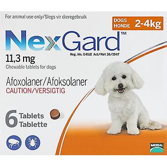Nexgard for Dogs 4-10 lbs (2-4kg) 6 Chewables