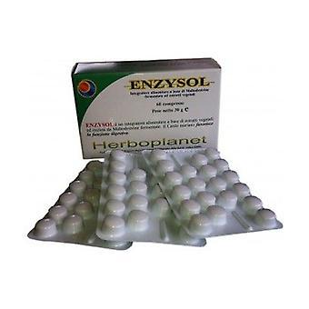 Enzysol 24g 60 tablets