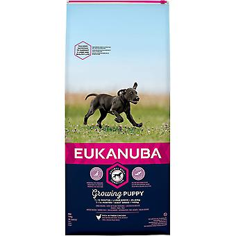 Eukanuba Groeiende Puppy Grote Ras Kip - 12kg