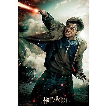 Harry Potter 3D Image Puzzle 300pc Harry