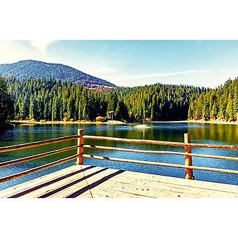 Taustakuva seinämaalaus järvi kesäpäivänä (400x260 cm)