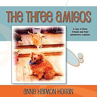 The Three Amigos by Anne Harmon Hogan - 9781614342762 Book