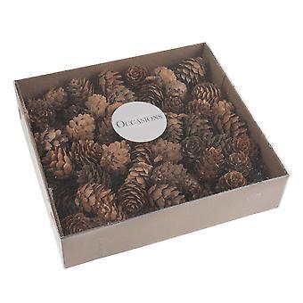 100 pommes de pin naturelles pour l'artisanat de Noël