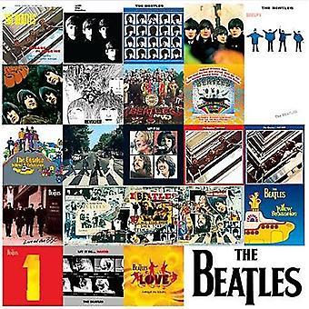Хронология Beatles Lp покрывает металлические знак