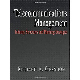 Telekommunikation Management: Strukturen und Strategien