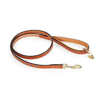 Shires Digby & Fox Diamante Dog Lead - Tan