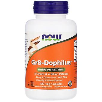 Gr8-Dophilus (120 vegetarische Kapseln) - Jetzt Lebensmittel
