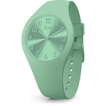 Ice Watch Colour watch 017914 - Small