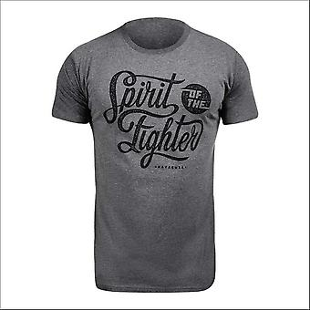 Hayabusa classic spirit of the fighter t-shirt - grey