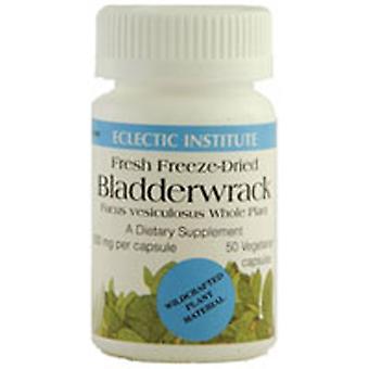 Eclectic Institute Inc Bladderwrack, 50 Caps
