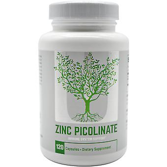 Universal Nutrition Zinc Picolinate Dietary Supplement - 120 Capsules