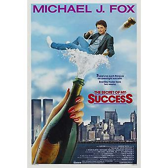 The Secret of My Success Movie Poster Print (27 x 40)