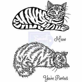 Sweet Dixie Clear Stamps - Cats - Clear Stamps