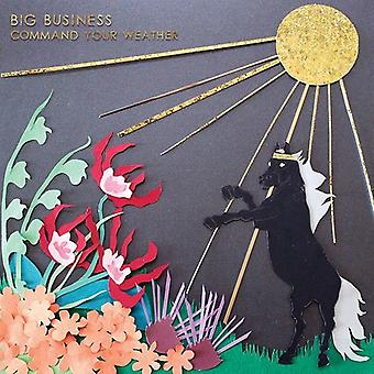Big Business - Command Your Weather [CD] USA import