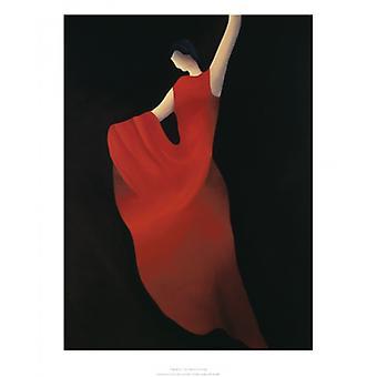 Flamenco Poster trykk av Patrick Ciranna (16 x 20)