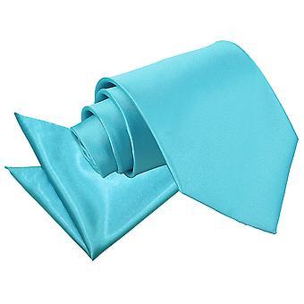 Robin's Egg blauw platte satijnen stropdas & zak plein Set
