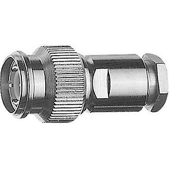 Telegärtner J01010A2611 TNC connector Plug, straight 50 Ω 1 pc(s)