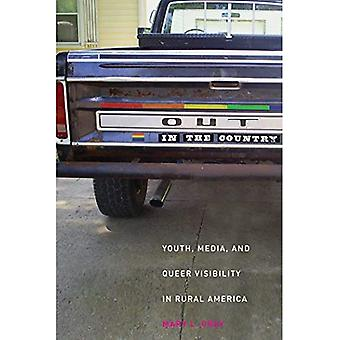 Out in the Country: Youth, Media, and Queer Visibility in Rural America (Intersections: Transdisciplinary Perspectives on Genders and Sexualities Series)