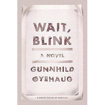 Wait, Blink: A Perfect Picture of Inner Life: A Novel