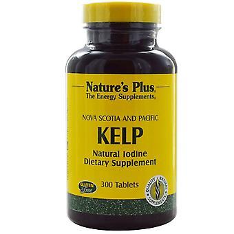 Nature's Plus Kelp Tabs 300 (3950)