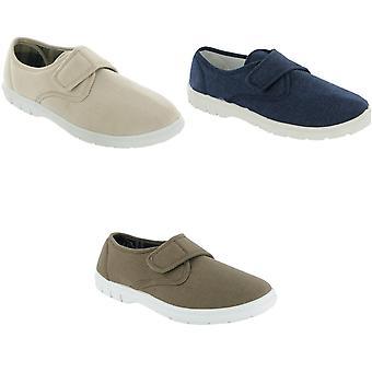Mirak Harvey Canvas Casual / Mens Shoes