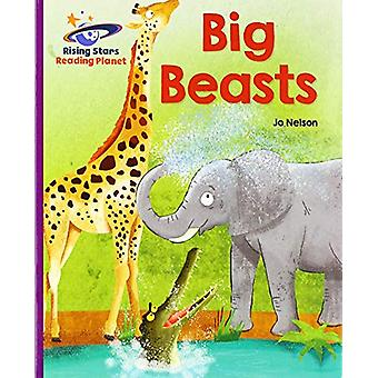 Reading Planet - Big Beasts - Purple - Galaxy by Katie Daynes - 978151