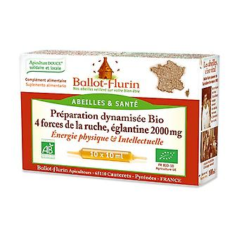 Dynamic preparation of 4 hive forces, ORGANIC wild rose 10 ampoules of 10ml