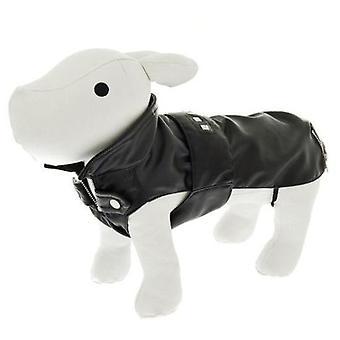Ferribiella Ryder Coat (Dogs , Dog Clothes , Coats and capes)
