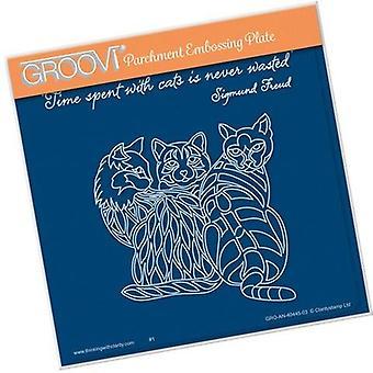 Groovi 3 Cats