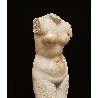 Statue av Venus plakatutskrift