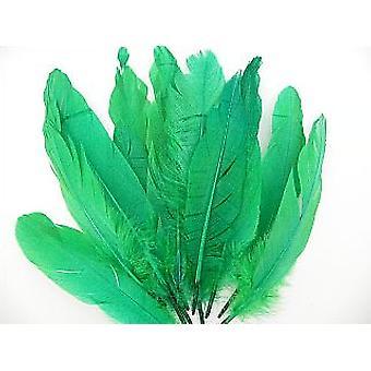ÚLTIMOS POCOS - 12 plumas verdes de pluma de pluma de ganso de 16 cm para artesanías