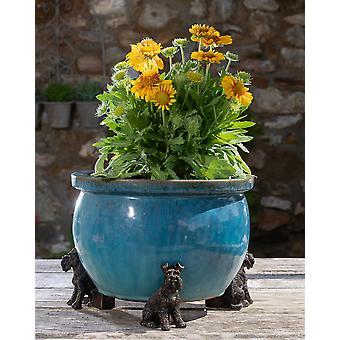 Potty Feet Decorative Schnauzer Themed Plant Pot Feet - Bronze Color 3pc