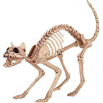 Cat skelett Prop.