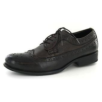 Mens Aberto Torresi A2084 Lace Up Brogue Shoes