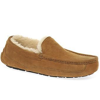 UGG כבשה נעליים