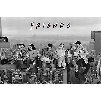 Friends, Maxi Poster - Skyscraper