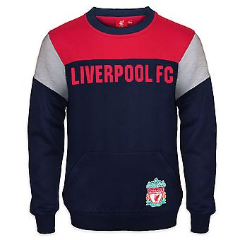 Liverpool FC Official Football Gift Boys Crest Sweatshirt Top