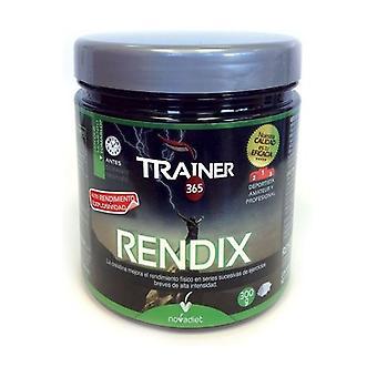 Rendix Trainer None
