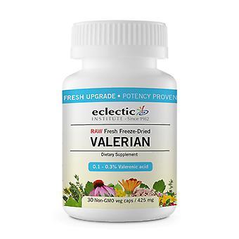 Eclectic Institute Inc Valerian officinalis, 425 Mg, 30 Korkkia
